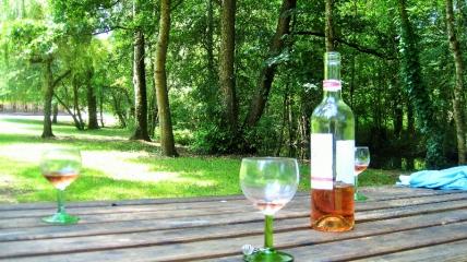 Picnic area near Les Hiboux gites, Poitou Charentes