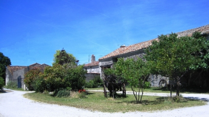Courtyard and garden at Les Hiboux holiday gites